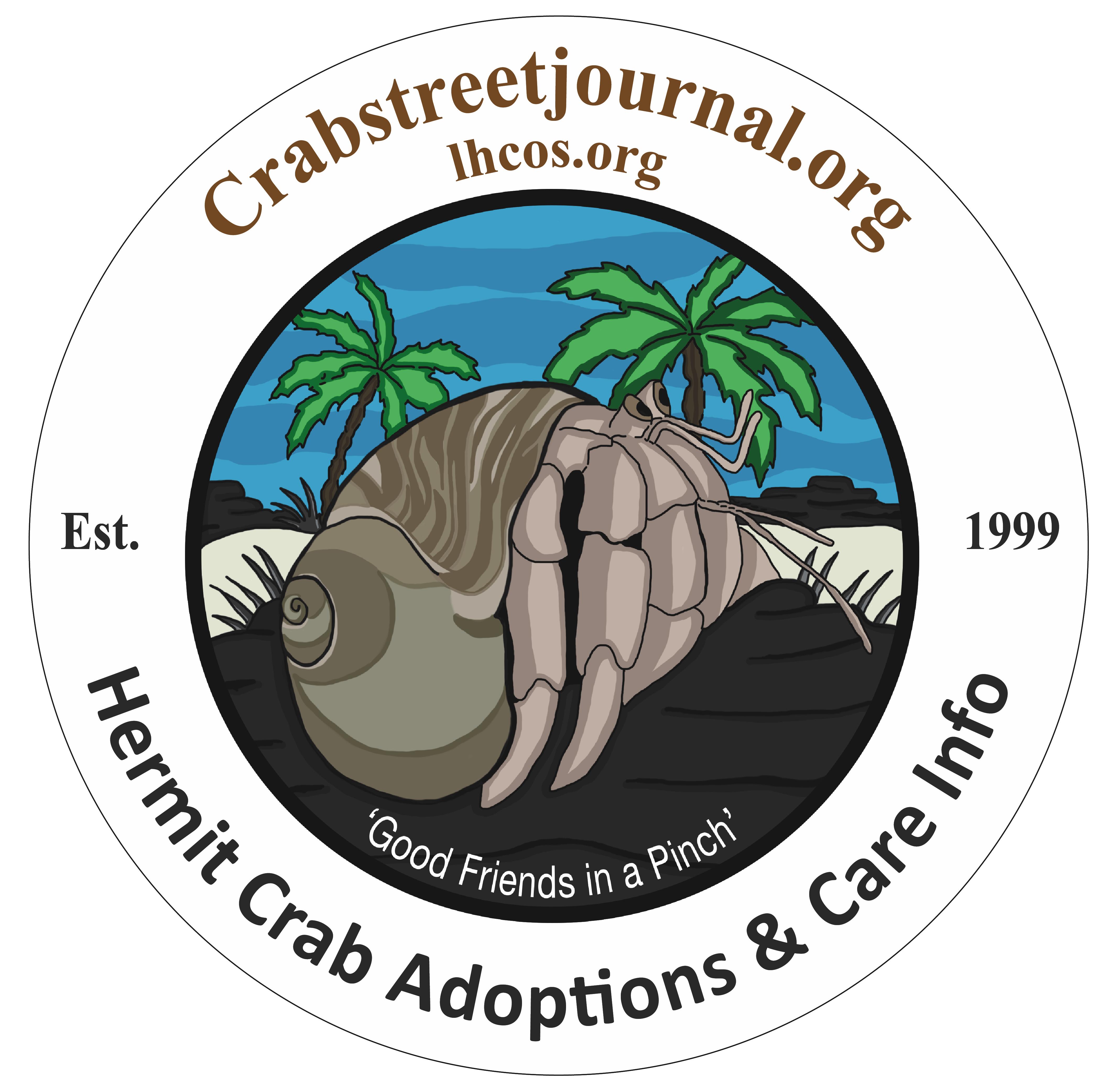 Hermit Crab Adoption Program